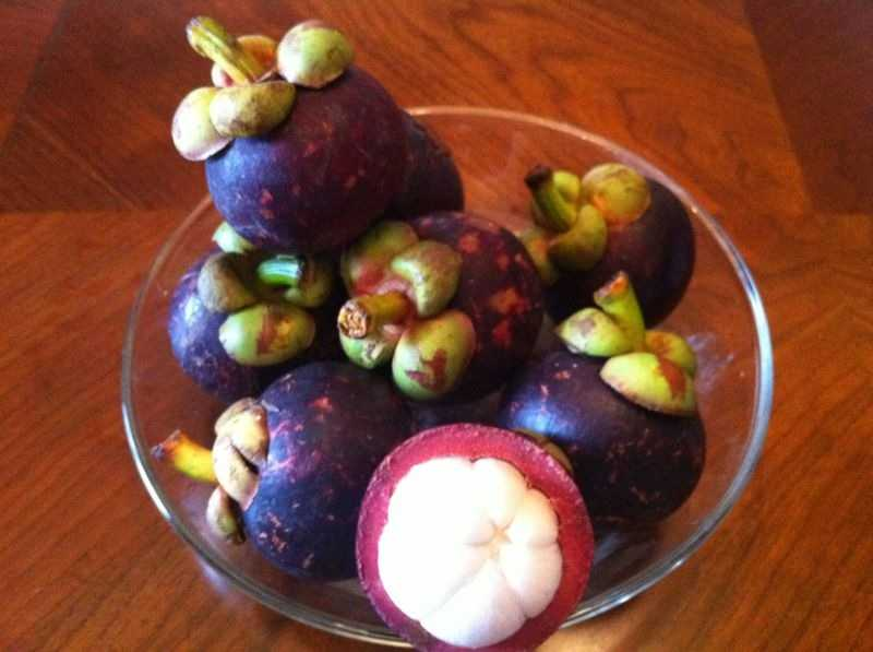 mangosteen research papers Mangosteen: a royal fruitresearch, clinical, and pdf filemangosteen: a royal fruitresearch, clinical, and personal experiences and patent adapted from health journal: feeding the mind.
